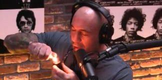 Joe Rogan, mmj, Joe Rogan drunk, Joe Rogan marijuana
