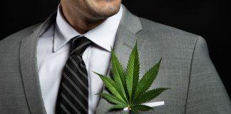 Cannabis Mergers