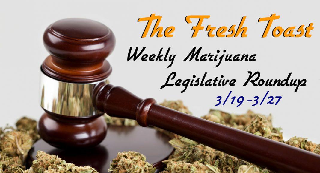 The Fresh Toast Marijuana Legislative Roundup: March 28