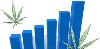 Cannabis Industry Predictions: 2018 — 2022