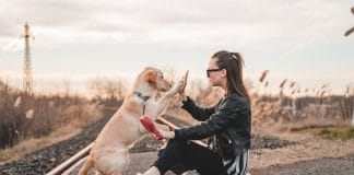 Science Says This Is The Best Way To Train Your Dog